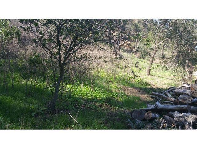 Single Family for Sale at 28552 Modjeska Canyon Road Modjeska Canyon, California 92676 United States