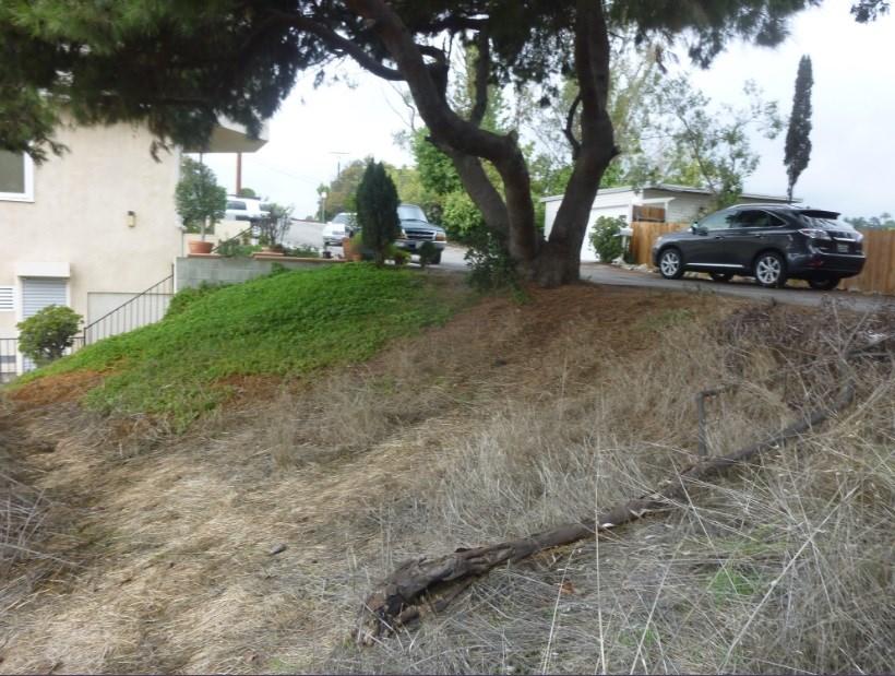 858 Ave. 37, Los Angeles, CA  Photo 1