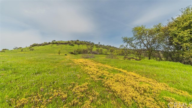 3179 Dry Creek Road, Butte Valley CA: http://media.crmls.org/medias/76c06482-72f5-44de-8c20-c554c6bc96de.jpg