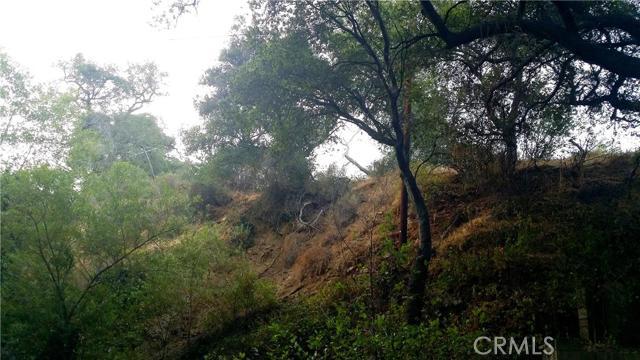 土地,用地 为 销售 在 Palmer Canyon Road 克莱尔蒙特, 加利福尼亚州 美国