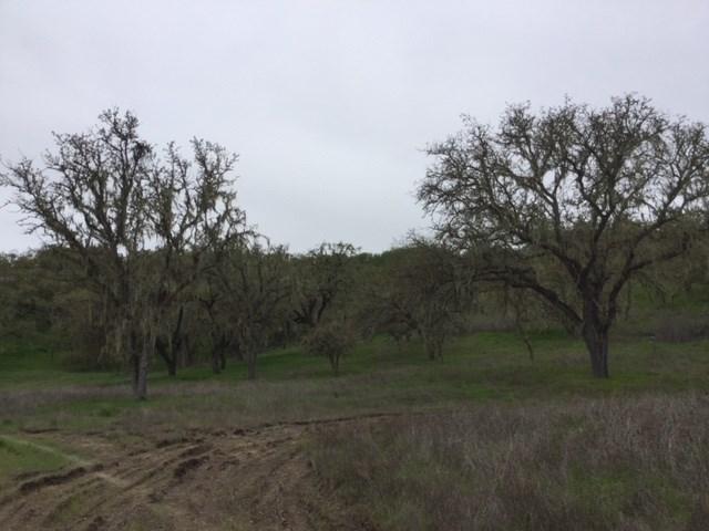 0 Spring Creek Way Templeton, CA 93465 - MLS #: NS18080290