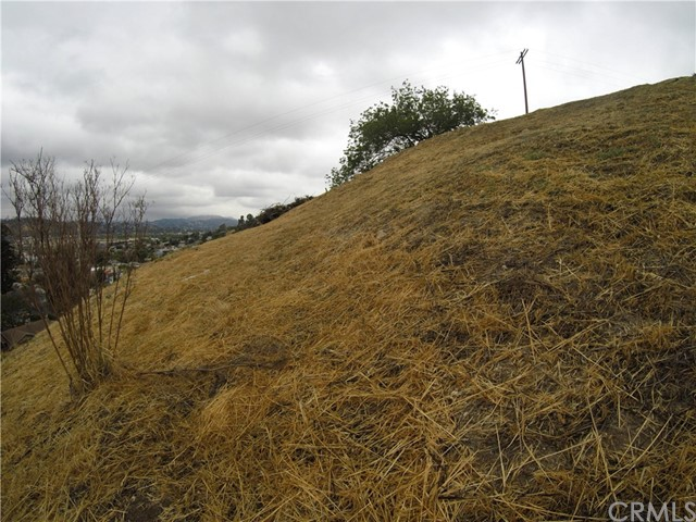 3586 E. Thorpe Av, Los Angeles, CA 90065 Photo 3