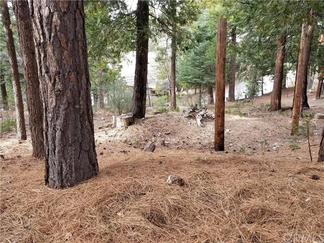 0 Golf Course Road Lake Arrowhead, CA 92352 - MLS #: EV18010426