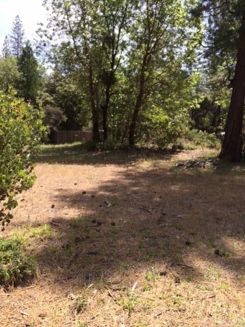 0 Graystone Lane, Berry Creek CA: http://media.crmls.org/medias/78920d9b-c9c1-4a65-8ec7-6d0bc2e0e029.jpg
