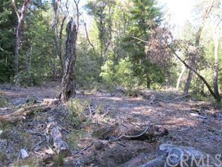 0 Big Basin Way, Outside Area (Inside Ca) CA: http://media.crmls.org/medias/7933ad61-44ba-478a-8735-881a49ebe75e.jpg