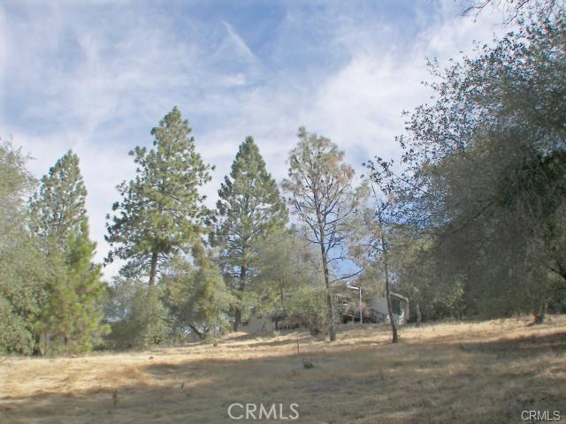 0 Bell Ranch Road, Berry Creek CA: http://media.crmls.org/medias/7976c342-4c61-45f0-9f12-4a553829a213.jpg
