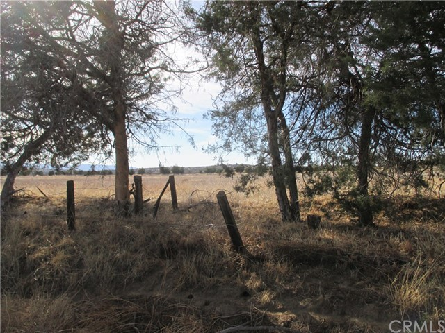 Land for Sale at 0 Highway 371 0 Highway 371 Anza, California 92539 United States