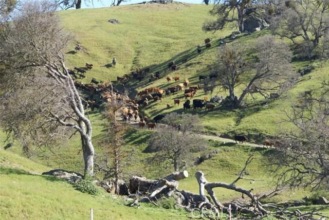 0 Del Valle Road, Livermore CA: http://media.crmls.org/medias/7aa11926-c2f4-40f1-b328-6c474554b120.jpg