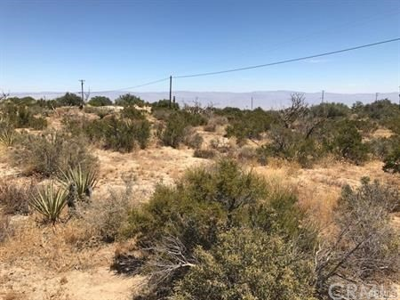 40 LOT Linda Vista Drive, Mountain Center CA: http://media.crmls.org/medias/7b04a1a1-fc85-4187-ac92-229f11f95ff5.jpg