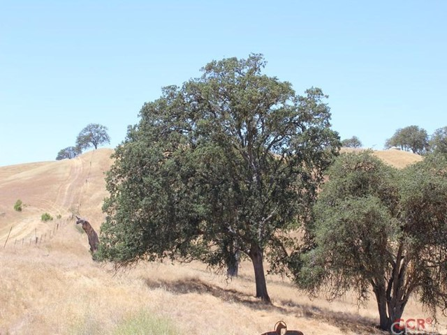 Property for sale at 0 Twin Canyon Lane, Creston,  CA 93432