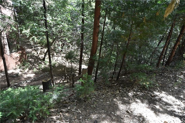 0 Fern Dell, Lake Arrowhead, California 92352, ,Land,For Sale,Fern Dell,SB19151182