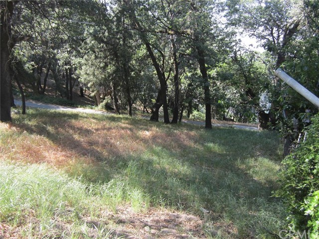 Additional photo for property listing at 0 Pinecone Drive  Running Springs, California 92382 United States