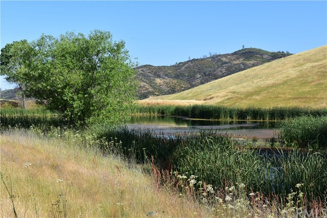 9520 Rocky Creek Road, Lower Lake CA: http://media.crmls.org/medias/7c406855-e4c3-4a32-a792-58df3c726e49.jpg