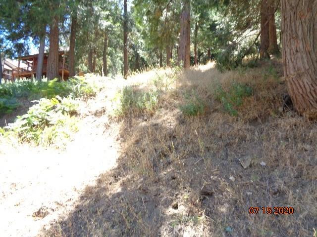 0 Mozundar Drive, Cedarpines Park CA: http://media.crmls.org/medias/7cfd039a-fb26-4aaa-abdb-03a1682b70be.jpg