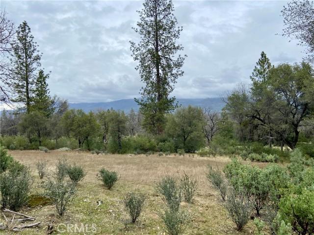 4907 Stumpfield Mountain Road, Mariposa CA: http://media.crmls.org/medias/7dc72b04-6d7b-487e-8379-da6b4e401698.jpg