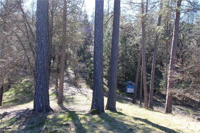 7925 High Valley Road Cobb, CA 95426 - MLS #: LC18030032