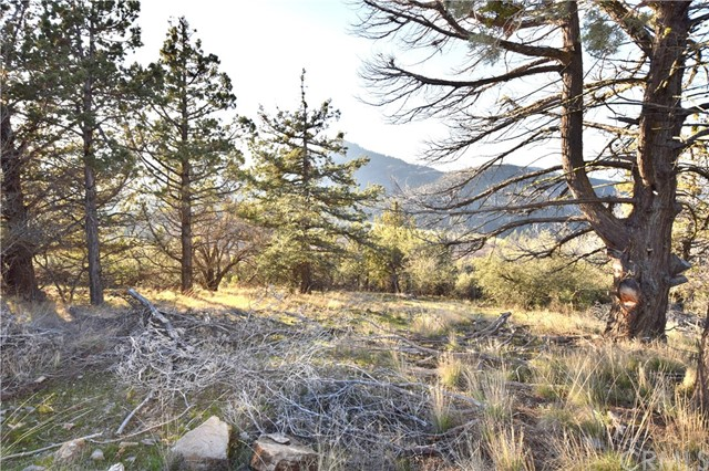 Single Family for Sale at 0 Parcel 3 Quail Run Road Yreka, California 96097 United States