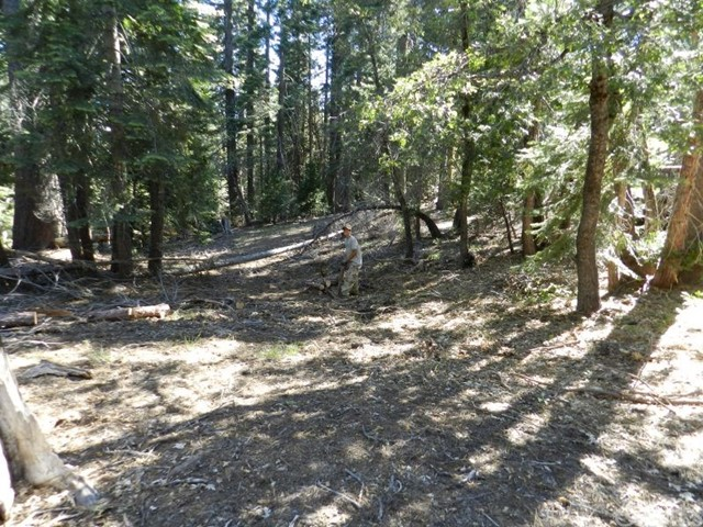 0 skyway Inskip, CA 0 - MLS #: PA17171294