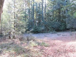 0 Big Basin Way, Outside Area (Inside Ca) CA: http://media.crmls.org/medias/7fbb528b-7c4f-4b2b-9edb-38ef8288a1b8.jpg