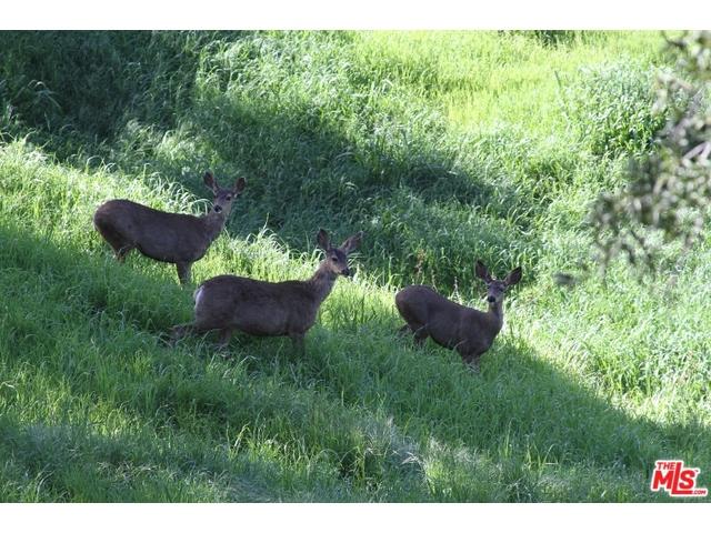 Additional photo for property listing at 0 Ingleside  Malibu, California 90265 United States