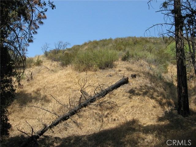 0 north Trl, Kagel Canyon CA: http://media.crmls.org/medias/804117aa-0df9-4515-bb6e-d6b301e8b86c.jpg
