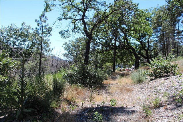 17435 Parnassus Road, Cobb CA: http://media.crmls.org/medias/80d6d285-8aed-40d2-90a7-18661bb61f7a.jpg