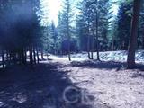 42435 Garnet Lane Shaver Lake, CA 93664 - MLS #: FR18181866