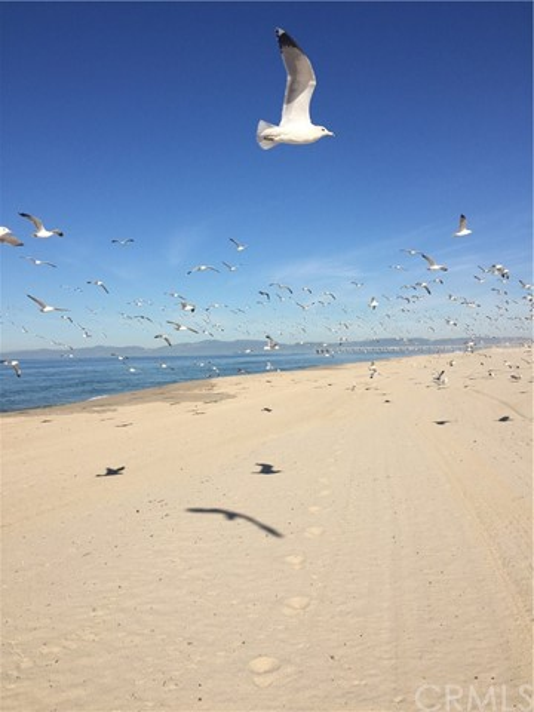85 18th St, Hermosa Beach, CA 90254 photo 18
