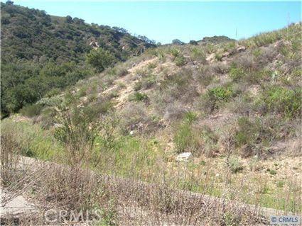 30295 Hunky Dory, Trabuco Canyon CA: http://media.crmls.org/medias/8217d288-f2cb-4f79-855a-182ce20c96b4.jpg