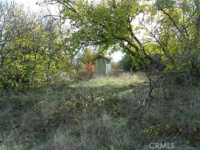 0 Highway 99, Orland CA: http://media.crmls.org/medias/821a495e-41bc-4e9d-98d4-78a9223d0d07.jpg