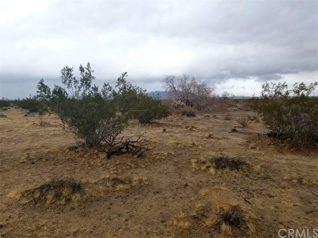 0 Sunever Road Joshua Tree, CA 0 - MLS #: EV18084006