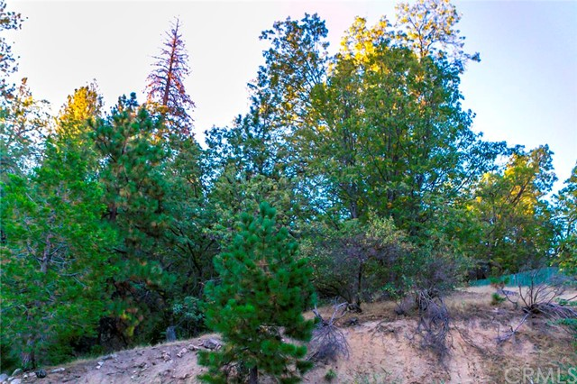 Additional photo for property listing at 0 Calgary  Lake Arrowhead, California 92352 United States