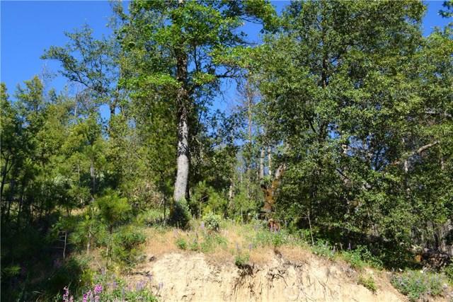 50 Dogwood Creek Drive Bass Lake, CA 93604 - MLS #: YG17135347