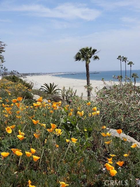 2033 E 3rd St, Long Beach, CA 90814 Photo 13