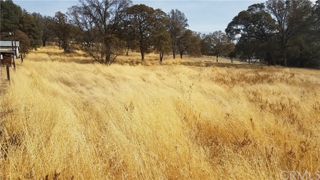 0 Unassigned Highway 49N Mariposa, CA 95338 - MLS #: MP17253096