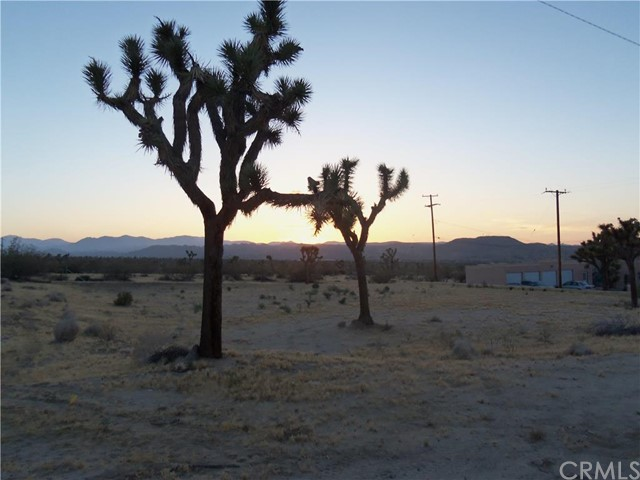 Additional photo for property listing at 7282 Olympic Road  Joshua Tree, California 92252 United States