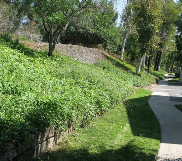 1788 N Willow Woods Dr, Anaheim, CA 92807 Photo 1