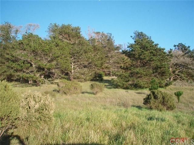 6785 Cambria Pines Road, Cambria CA: http://media.crmls.org/medias/84e0ca86-7393-43be-85ec-129ffe455fe9.jpg