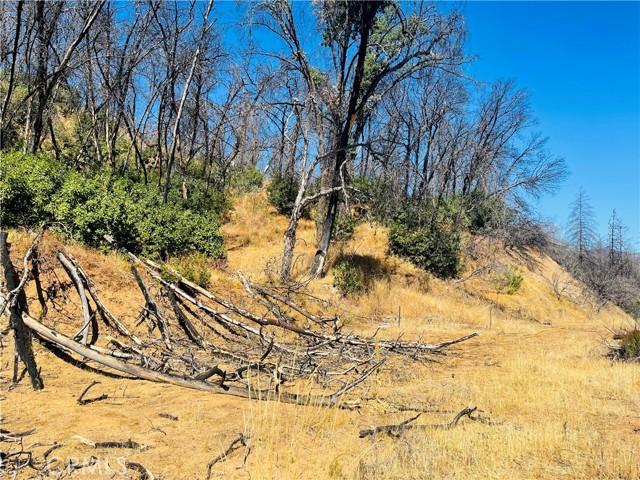 12657 Elk Mountain Road, Upper Lake CA: http://media.crmls.org/medias/859282df-3799-40c1-92cb-331af7295972.jpg