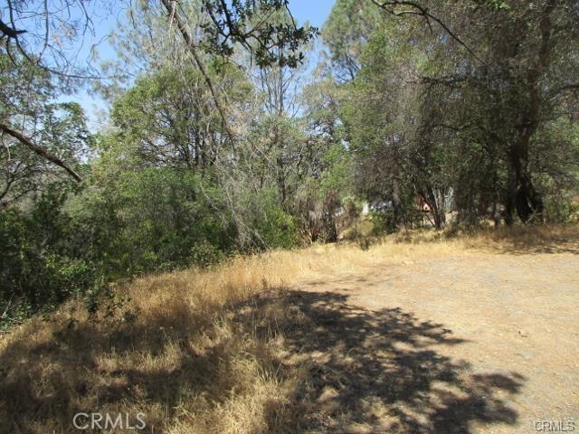 0 Apica Avenue, Oroville CA: http://media.crmls.org/medias/8648afa2-c117-4de6-aafc-31e912cc53f9.jpg