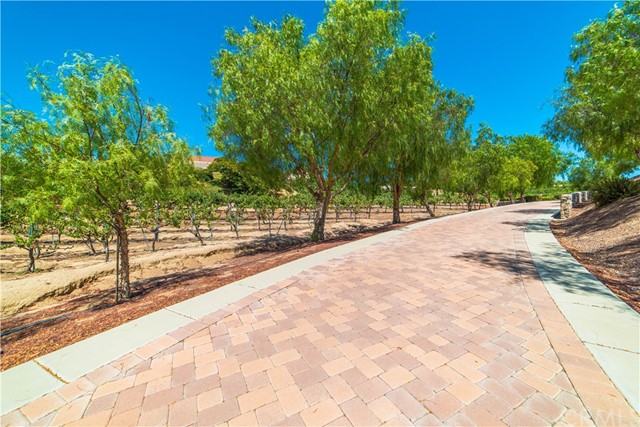 39788 CALLE CONTENTO, TEMECULA, CA 92591  Photo 17