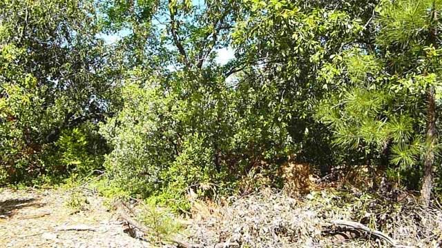 0 Uppercedarcrest Sonora, CA 0 - MLS #: SP17279687