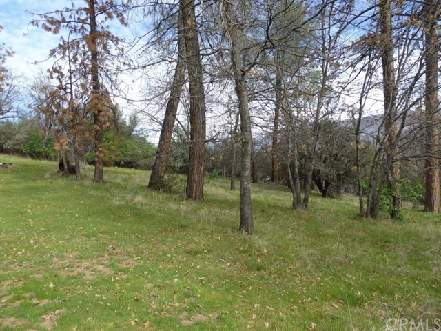 56255 Horn Road North Fork, CA 93643 - MLS #: FR18013070