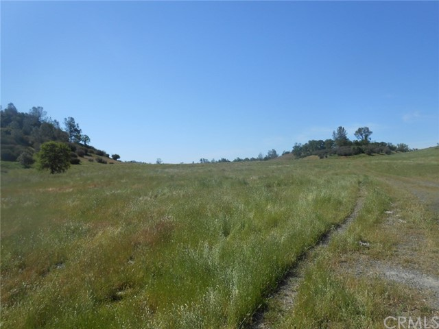 Terreno por un Venta en 6740 Pendola Gardens Road Bear Valley, California 95338 Estados Unidos