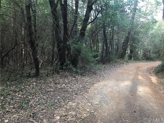 Single Family for Sale at 0 Timber Cove Yankee Hill, California 95965 United States