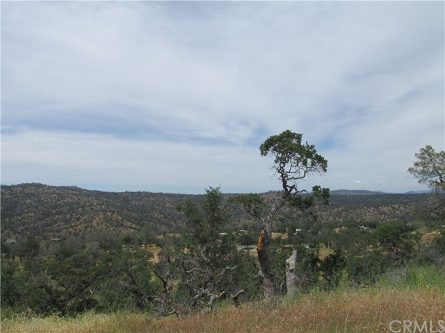 31274 Big River Way Coarsegold, CA 93614 - MLS #: YG17098985