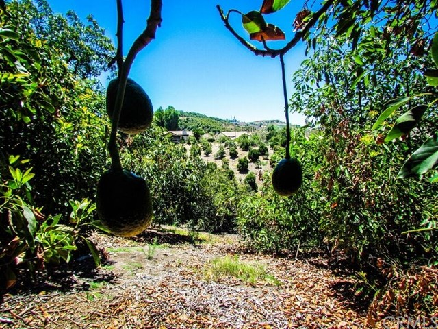 0 Sandia Creek Dr, Temecula, CA  Photo 3