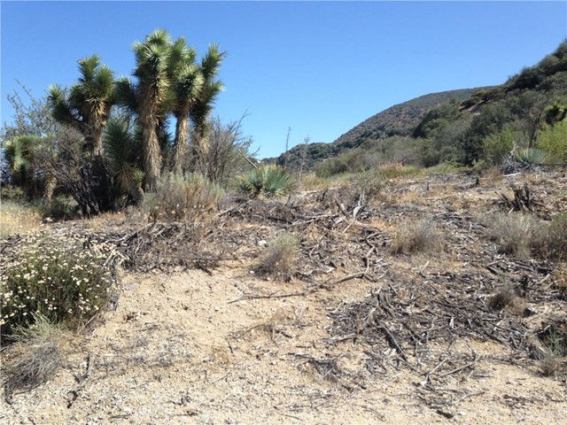Additional photo for property listing at 0 Stuveling Street  Phelan, California 92371 United States