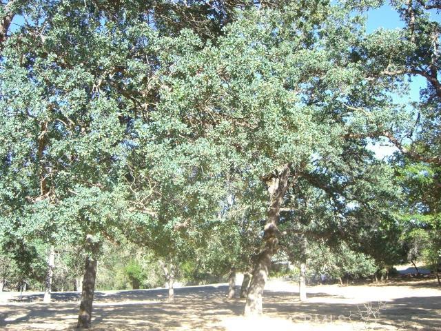 15675 Eagle Rock Road, Hidden Valley Lake CA: http://media.crmls.org/medias/8873ebe1-4ad0-4b9f-85ff-724934833c4a.jpg