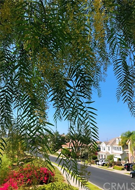 23689 Castle Rock, Mission Viejo CA: http://media.crmls.org/medias/89c4898a-262f-416d-8481-d43563800299.jpg